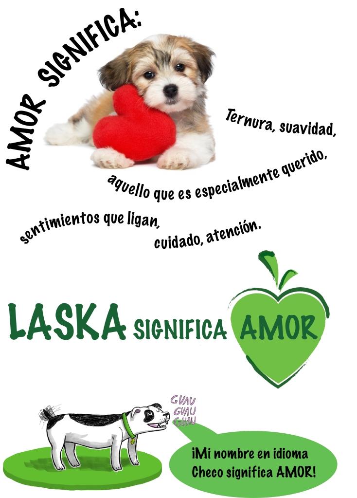 Amor-Laska