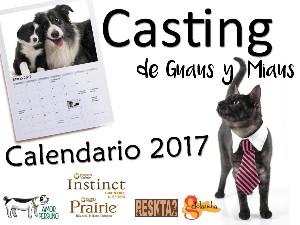 Calendario Perruno.Reglamento Calendario Guaus Y Miaus 2017 Amor Perruno