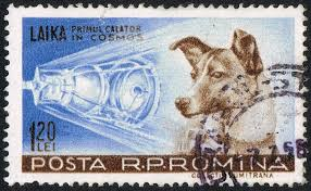 laika-dog-in-space